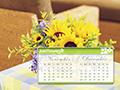 calendar 8
